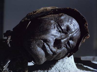 Mummy of Iron Age Sacrificial Victim, Tolland Man, Denmark, Scandinavia