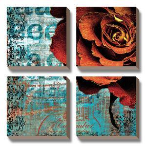 Graffiti Rose by Christina Lazar Schuler