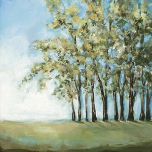 Tree in Summer by Christina Long