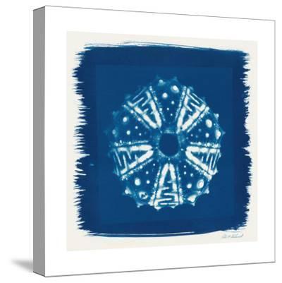 Cyan Blue Urchin