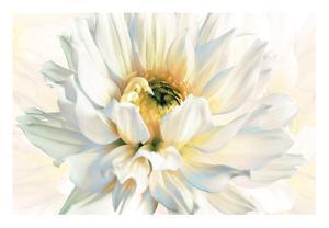 Painted Petals I by Christine Elizabeth
