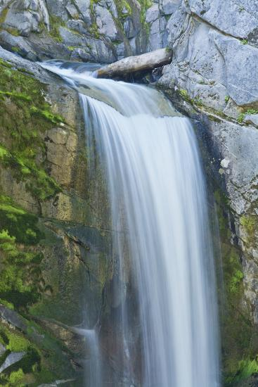 Christine Falls, Mount Rainier National Park, Washington, Usa-Michel Hersen-Photographic Print