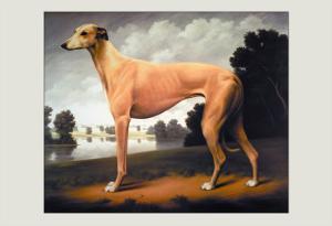 Greyhound on a Parkland Landscape by Christine Merrill