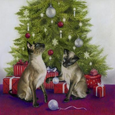 Christmas Siamese Cats-Janet Pidoux-Giclee Print