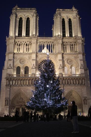 Christmas Tree, Notre-Dame De Paris Cathedral, Paris, France, Europe-Godong-Photographic Print