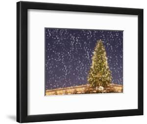 Christmas Tree under Snowfall