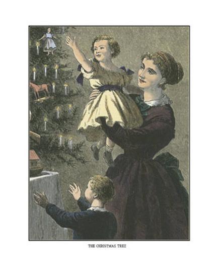 Christmas Tree--Art Print