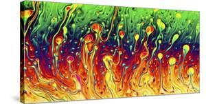 Soap Opera by Christophe Kiciak
