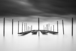 The Oyster Bar by Christophe Staelens