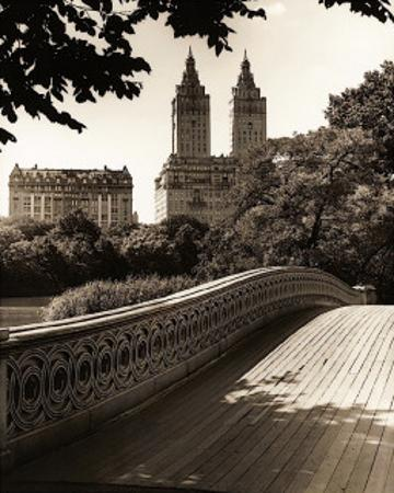 Central Park Bridges I