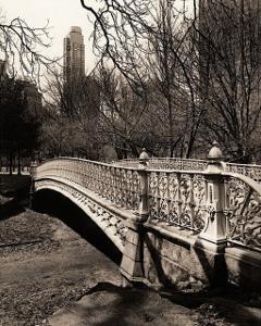 Central Park Bridges II by Christopher Bliss
