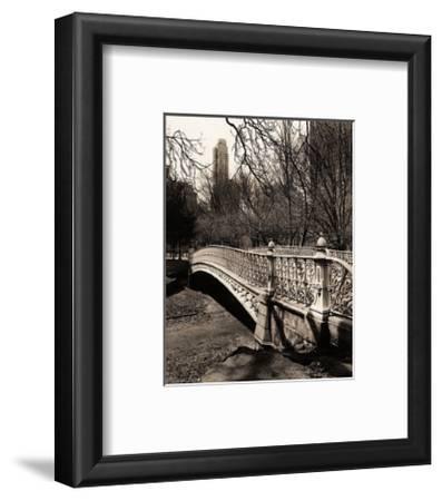Central Park Bridges II