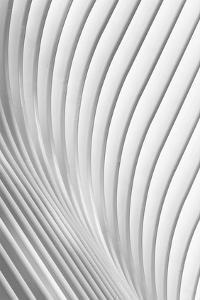 Calatrava Lines by Christopher Budny