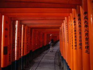 Traditional Torii with Inscription at Fushimi Inari Shrine Near Kyoto, Kyoto, Kinki, Japan by Christopher Groenhout