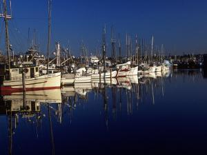 Fishing Boats in Port, Ballard, WA by Christopher Jacobson