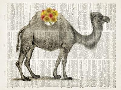 Flower Back Camel by Christopher James