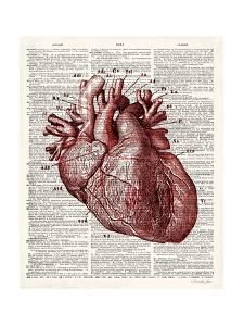 Vintage Anatomy Heart by Christopher James