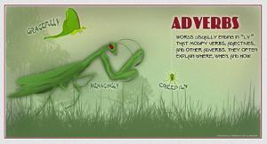 Adverbs by Christopher Rice