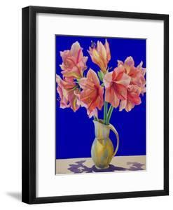 Amaryllis in a Jug, 2007 by Christopher Ryland