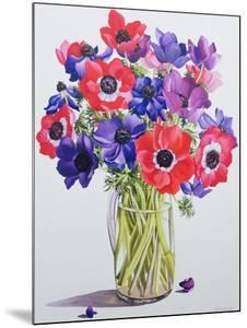 Anemones in a Glass Jug, 2007 by Christopher Ryland