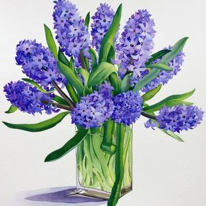 Blue Hyacinths by Christopher Ryland