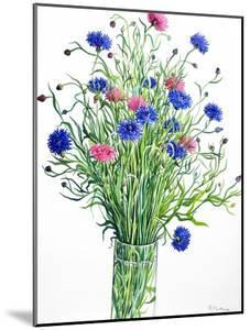 Cornflowers by Christopher Ryland