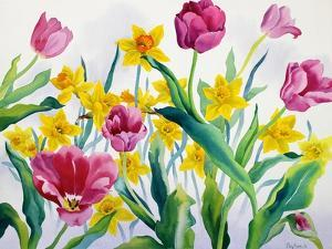 Daffodils and Tulips by Christopher Ryland