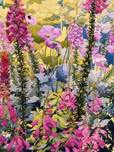 Garden with Foxgloves by Christopher Ryland