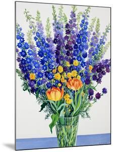 Larkspur and Delphiniums by Christopher Ryland