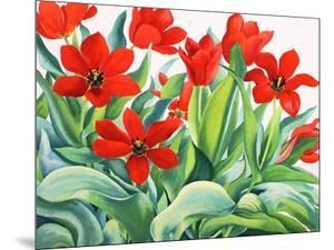 Madame Lefeber Tulips by Christopher Ryland