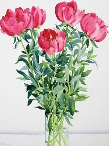 Peonies by Christopher Ryland