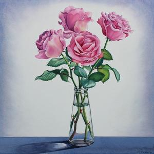 Pink Roses by Christopher Ryland