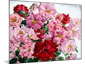Red and Pink Roses, 2008 by Christopher Ryland