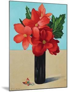 Red Begonias by Christopher Ryland