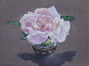 Rose Portrait by Christopher Ryland