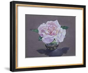 Rose Portrait by Christopher Ryland