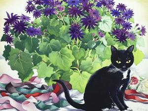 Senetti and Florence by Christopher Ryland