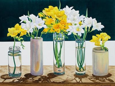 Still Life Freesias