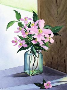 Still Life Pink Clematis by Christopher Ryland
