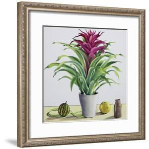 Still Life with Bromeliad by Christopher Ryland