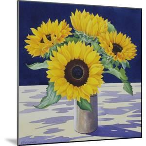 Sunflower Still Life by Christopher Ryland