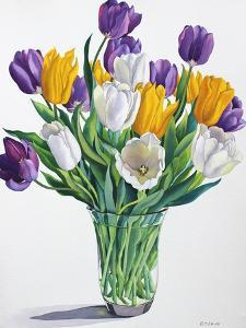 Tulips in Glass Vase by Christopher Ryland