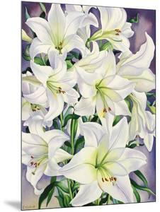White Lilies, 2008 by Christopher Ryland