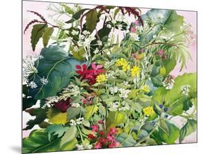 Wild Flowers with Comfrey and Campion by Christopher Ryland