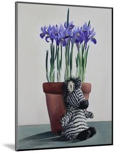 Winter Irises and Zebra by Christopher Ryland