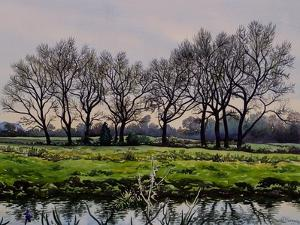 Winter Trees by Christopher Ryland