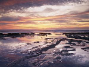California, San Diego, Sunset Cliffs, Sunset Reflecting in Tide Pools by Christopher Talbot Frank