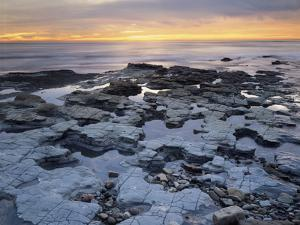 California, San Diego, Sunset over Tide Pools on the Pacific Ocean by Christopher Talbot Frank