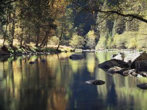 California, Sierra Nevada, Yosemite National Park, Autumn Along the Merced River by Christopher Talbot Frank