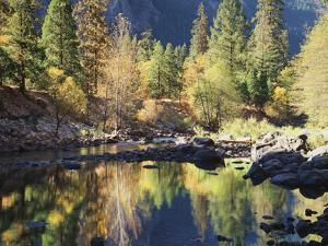 California, Sierra Nevada, Yosemite National Park, Fall Along the Merced River by Christopher Talbot Frank